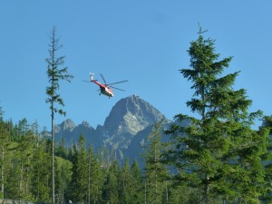 5 Tips for Promoting Civilian Volunteer Safety During Search and Rescue Missions